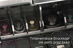 Ingresso inchiostro all'interno della testina di stampa Canon